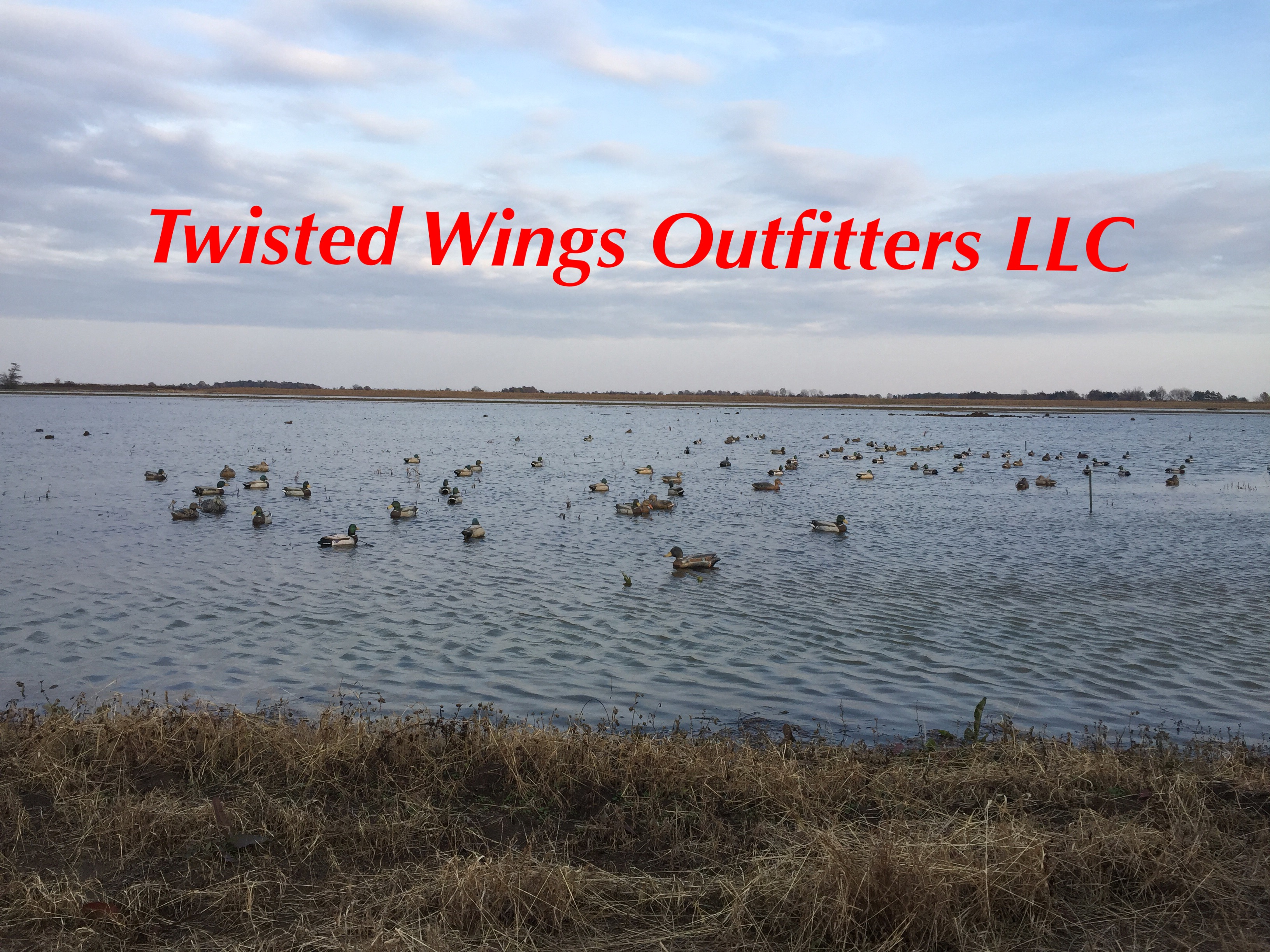 twisted-wings-outfitters-15479320561586716314