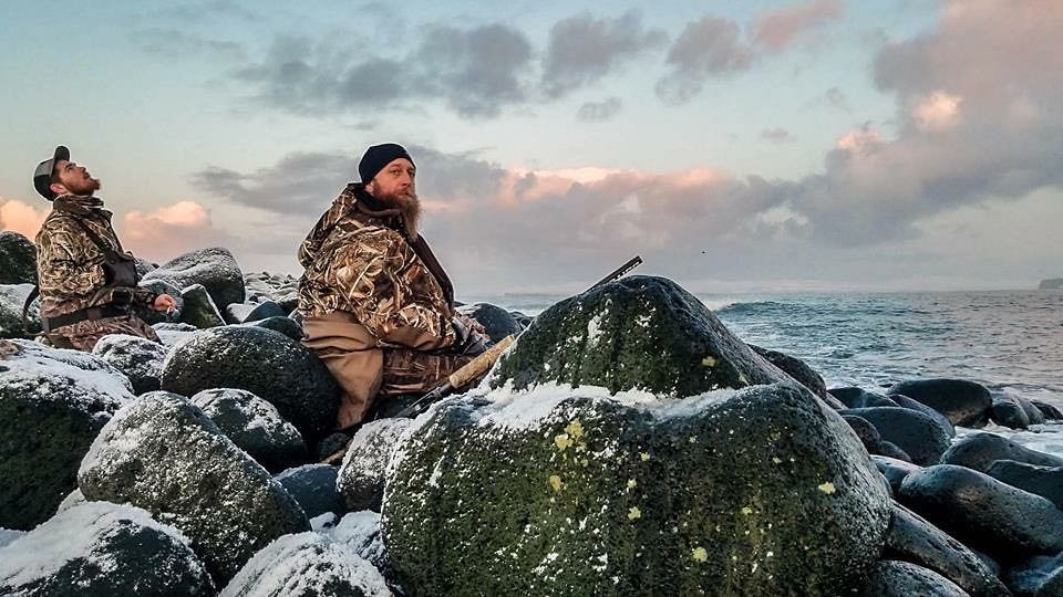 king eider adventures sea duck hunting in alaska