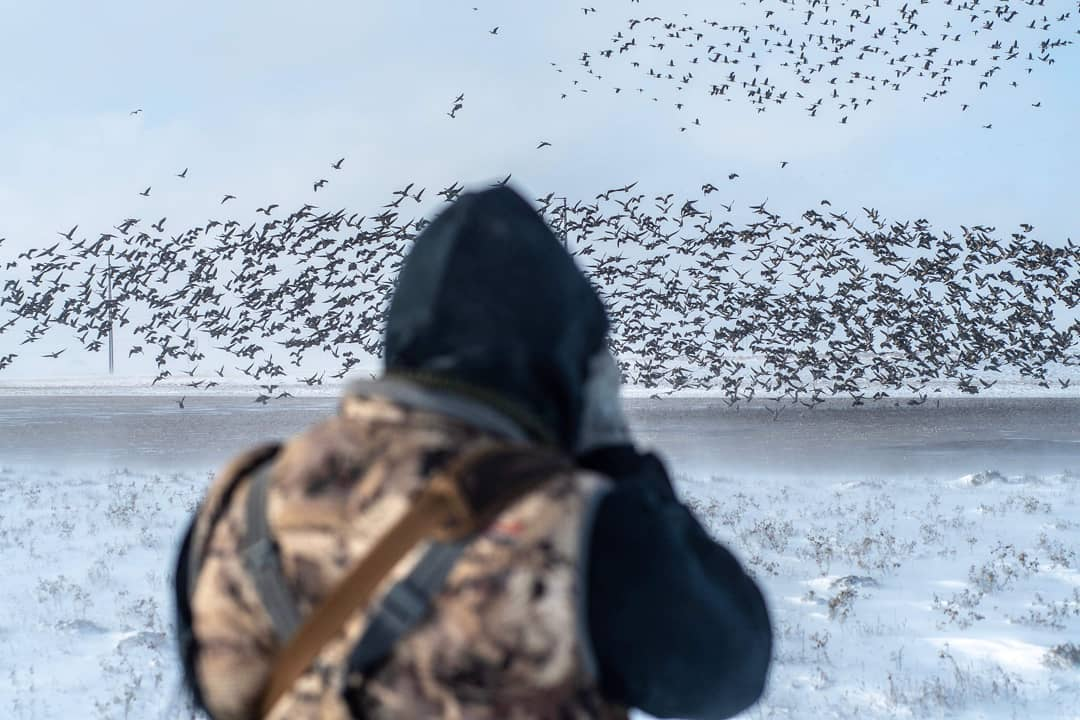 goose-reapers-guided-outdoors-1559252024754973329