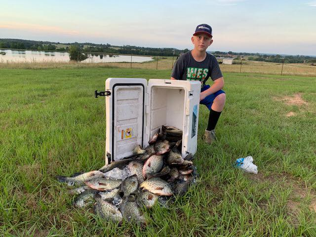 lake-o-the-pines-crappie-fishing-15594139681635347078
