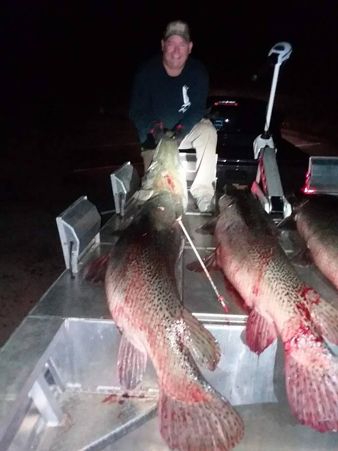 blood-line-bowfishing-charters-15648776622030610744