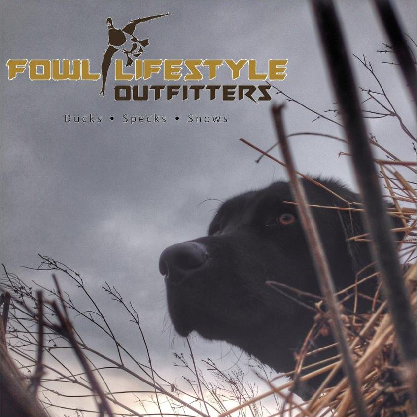 A black lab waiting intensely in a duck blind with the Fowl Lifestyle Outfitters logo in the top left corner