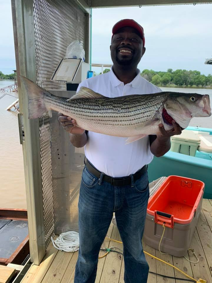 A man proudly smiling while holding a trophy size striper in front of his chest