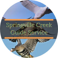 springville-creek-guide-service-20886283221559415483