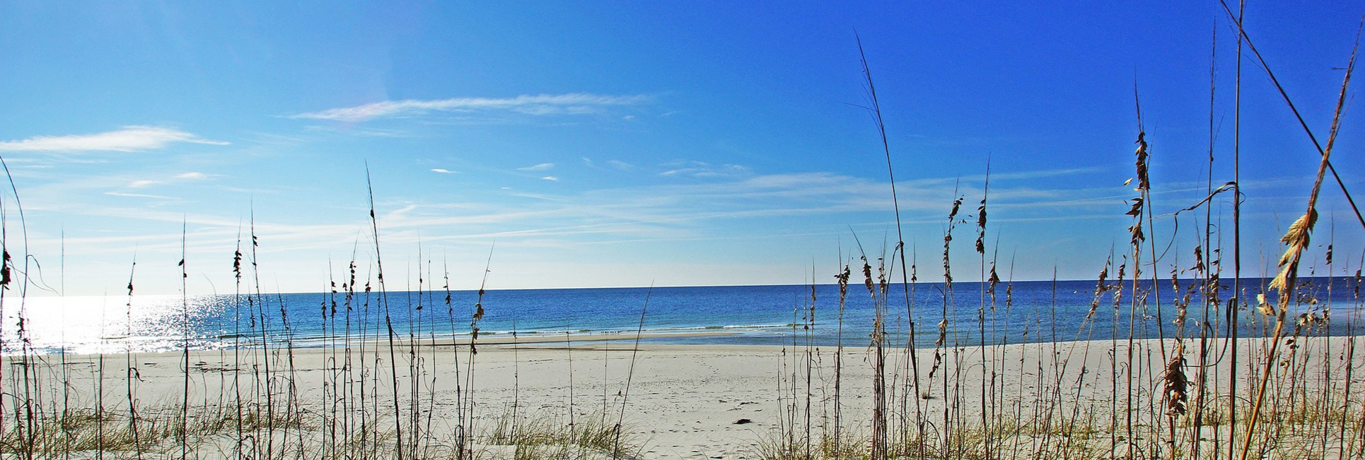 view from the shoreline of gulf shores, AL of the ocean