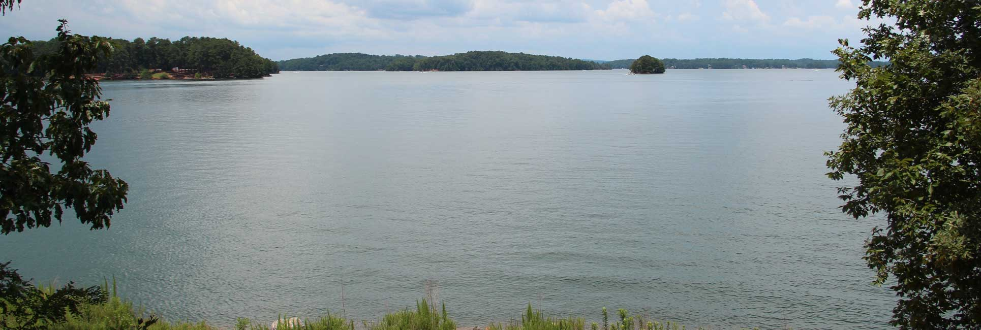 Shoreline with a green trees and an island on Lake Lanier, GA