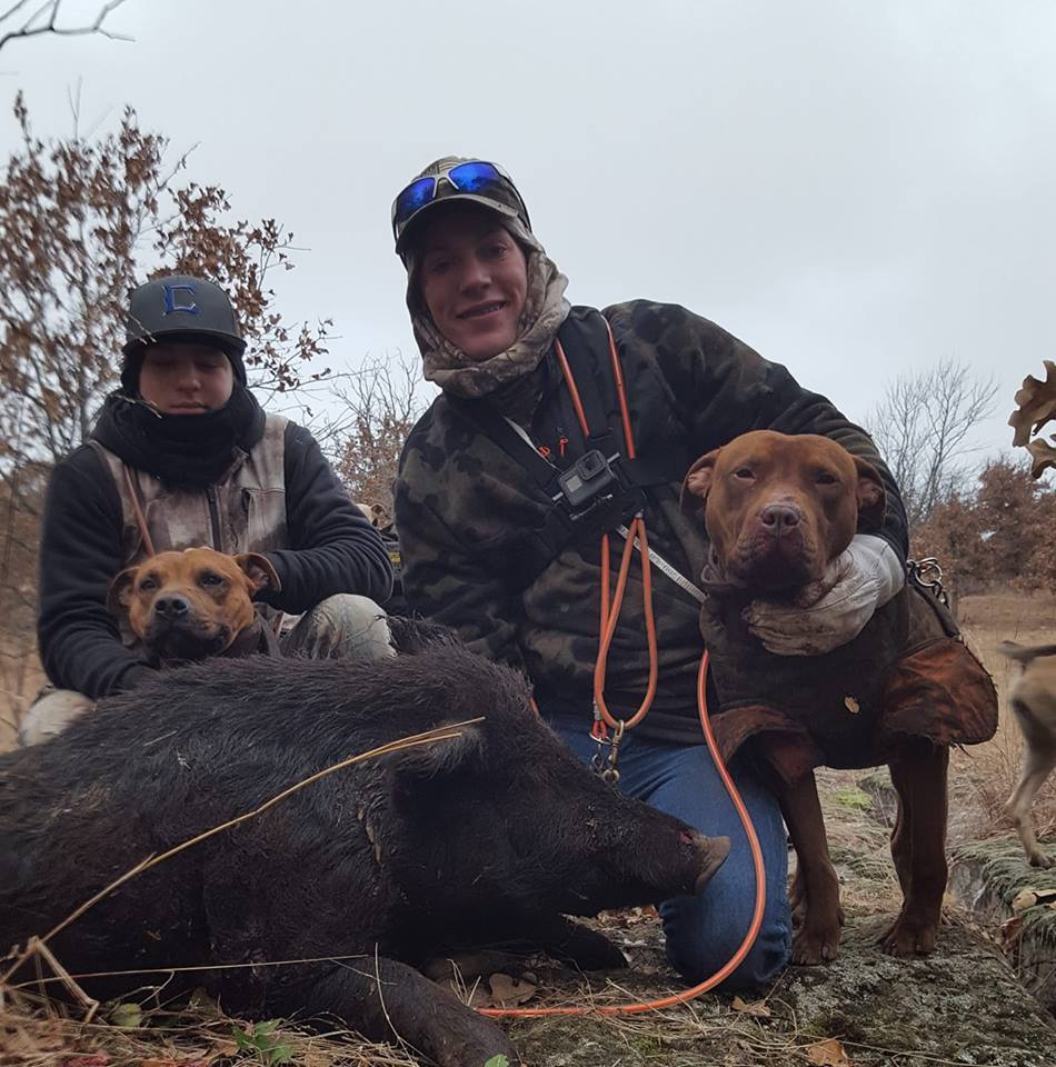 hog-hunting-with-dogs-and-knives-15469070071031907765
