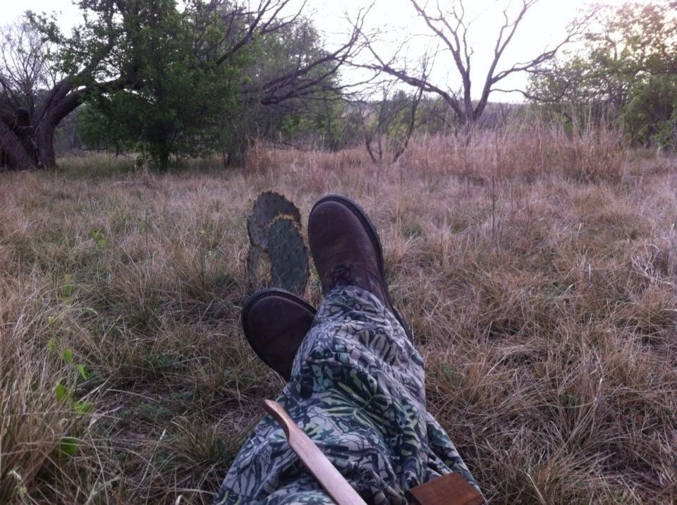 texas-spring-turkey-hunt-1548275195954073189