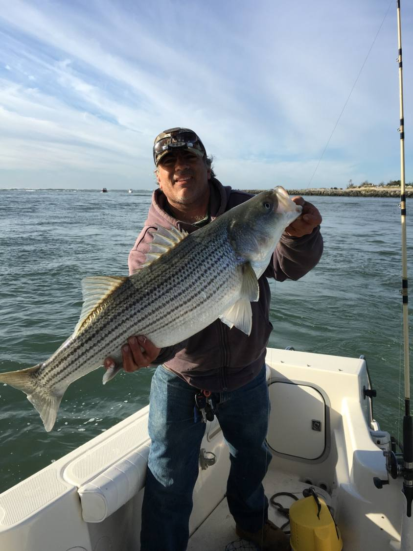 full-day-inshore-trip-15486971551694249001