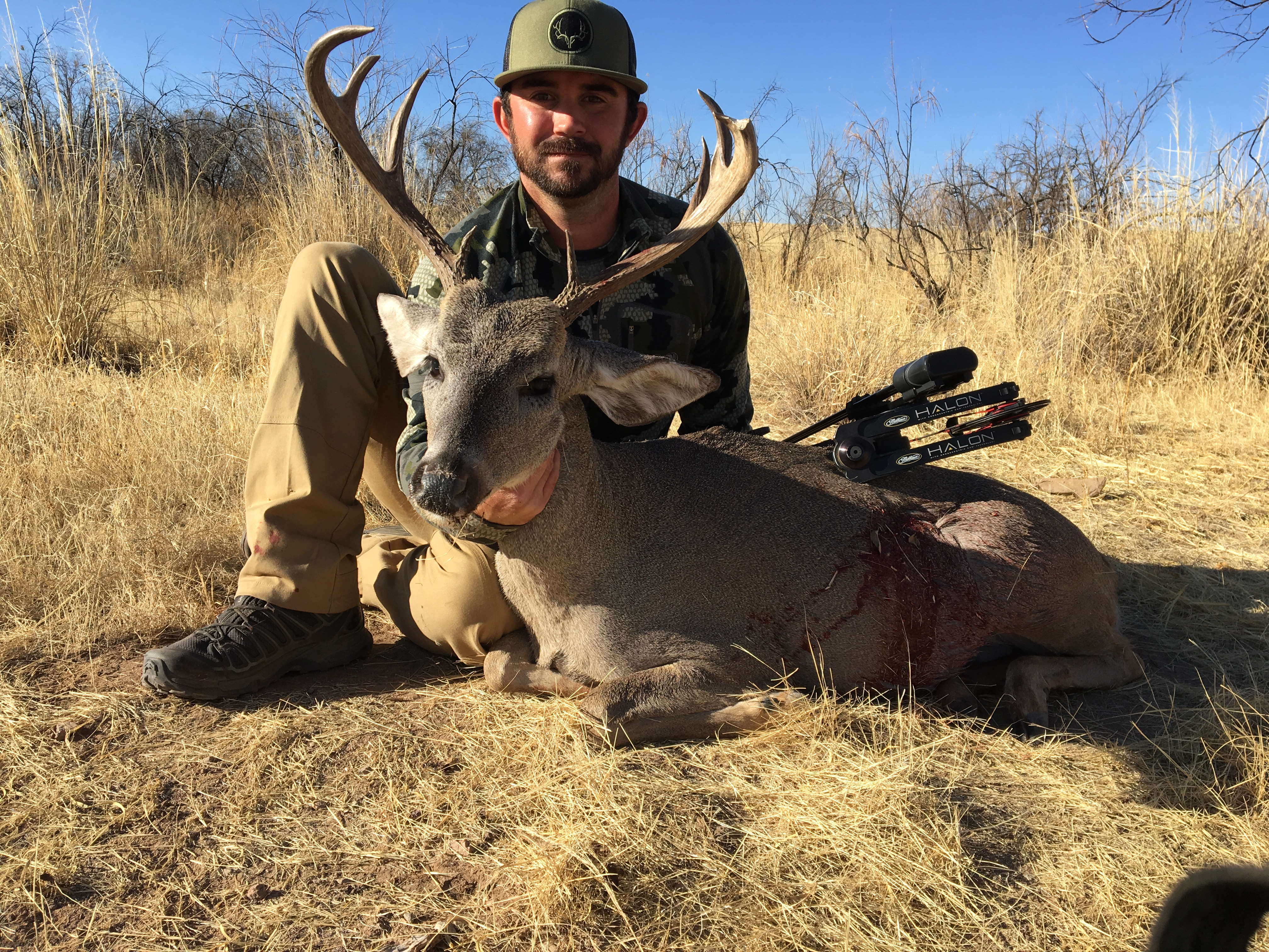 arizona-otc-coues-deer-15512906241653451504