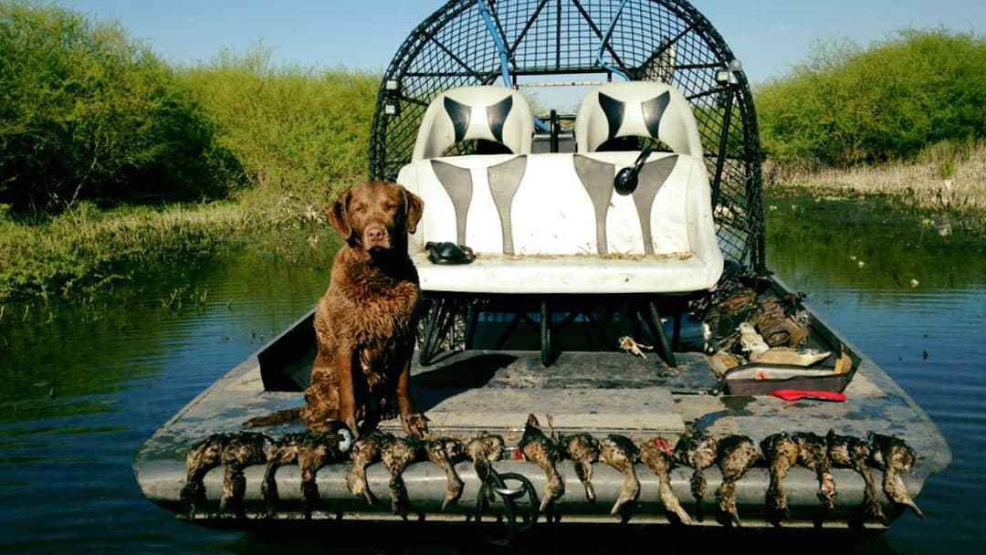 south-texas-duck-hunting-15568525092102371279