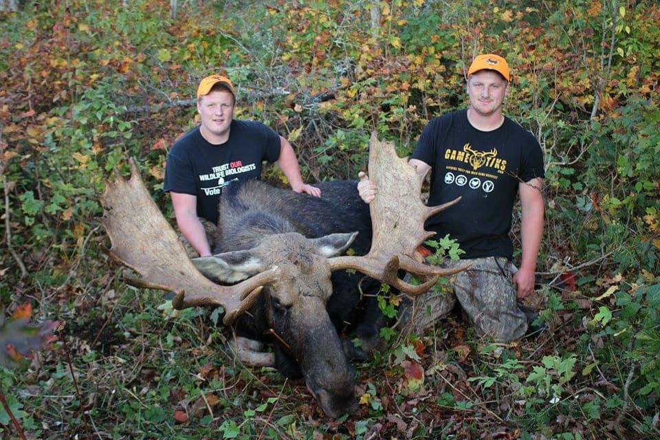 maine-moose-hunting-1558203760776424542
