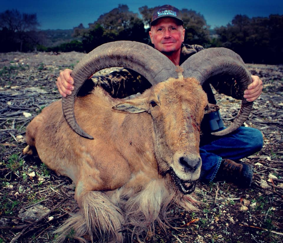 2x1-aoudad-sheep-hunt-15596045641767753231
