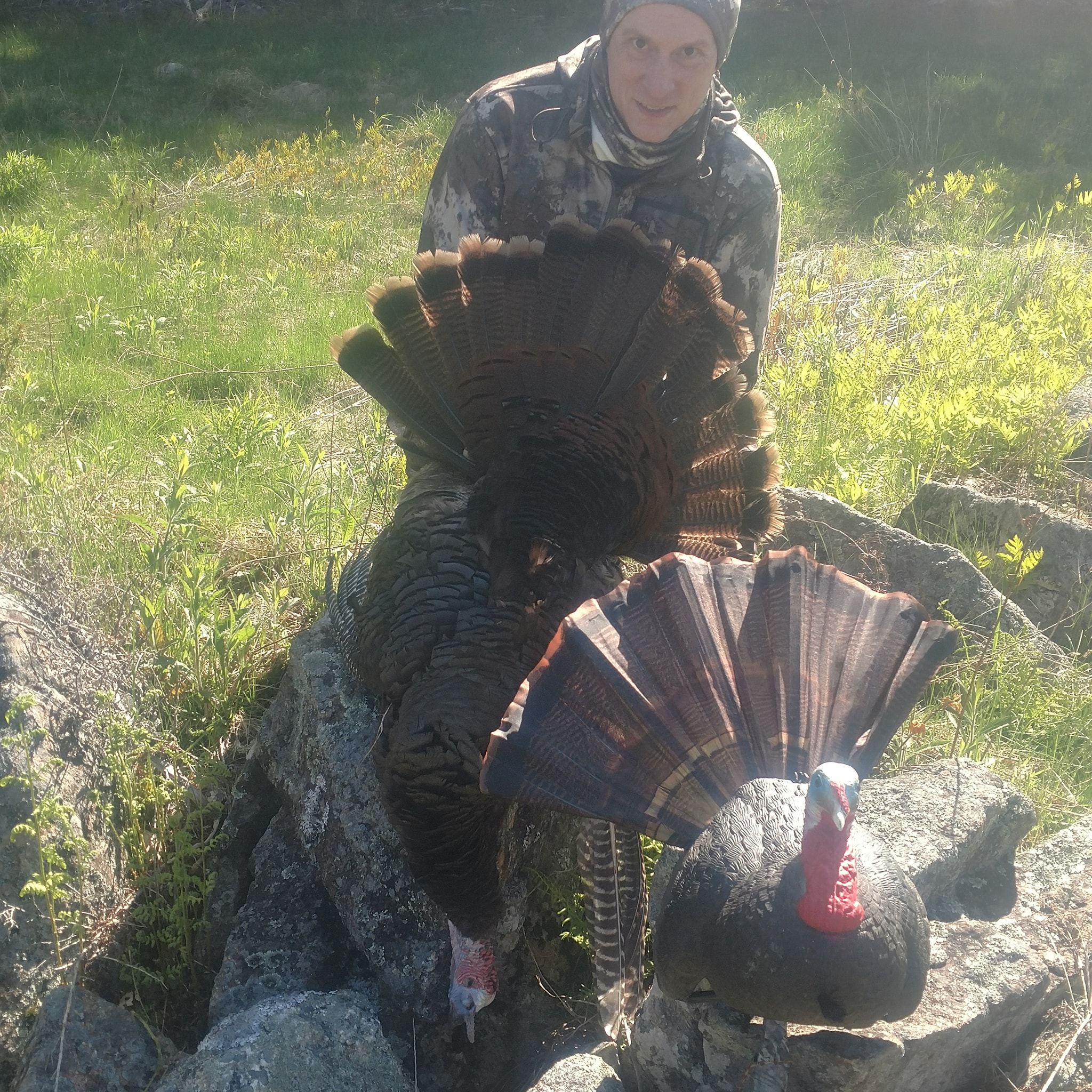 eastern-turkey-hunt-12-hrs-1562428987814782426