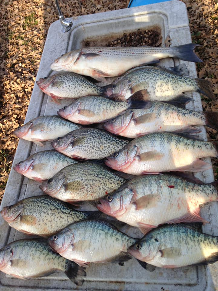 crappie-trip-1566770693255825896