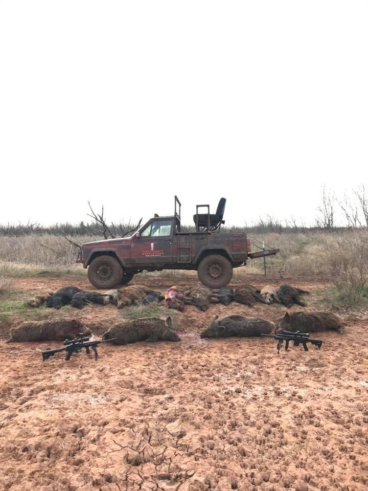 red-dirt-hog-hunt-156695055175496488