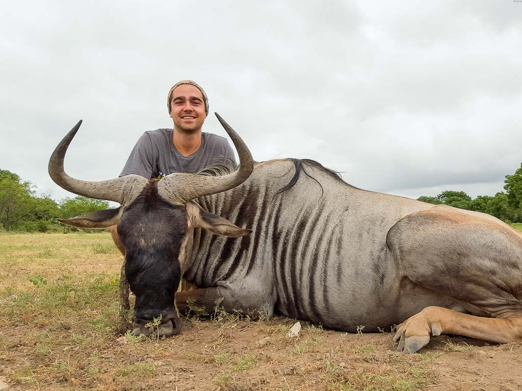 blue-wildebeest-weekend-hunt-1569291159329509102