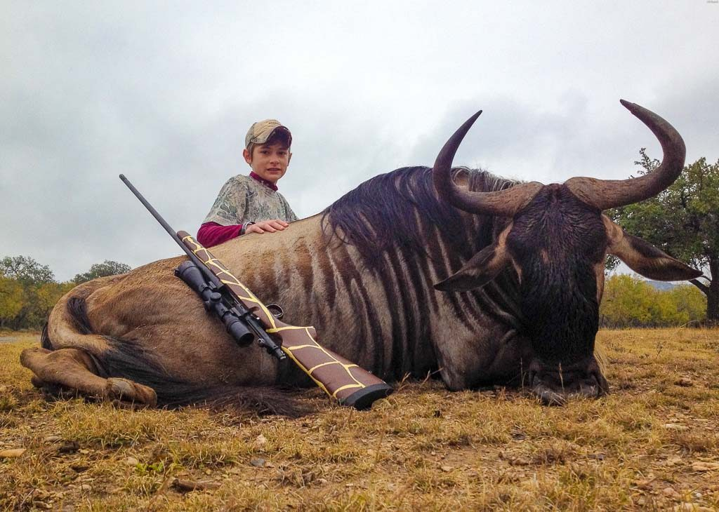blue-wildebeest-weekend-hunt-15692911782145605369