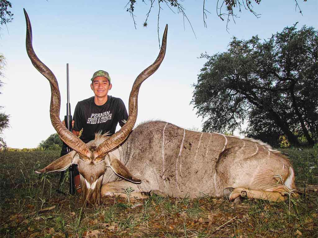 kudu-weekday-hunt-15693563301085281241