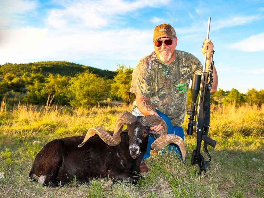 black-hawaiian-sheep-weekend-hunt-15705823091702388954