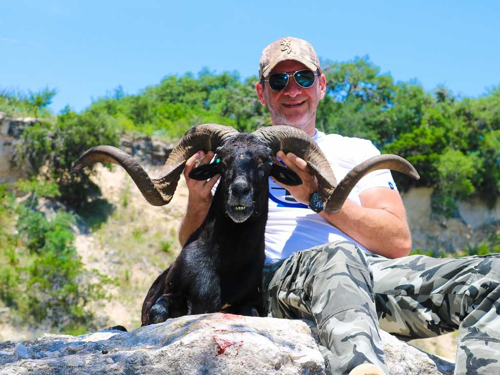 black-hawaiian-sheep-weekend-hunt-1570582314370954325