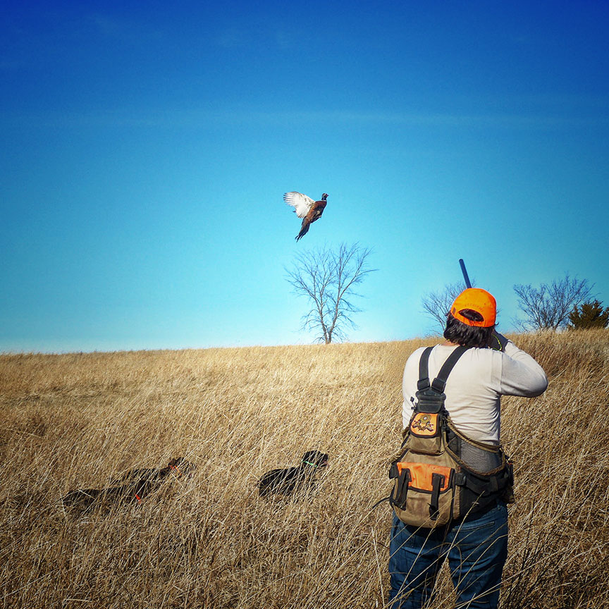 1-12-day-2night-unlimited-pheasant-hunt-1610398816555592801
