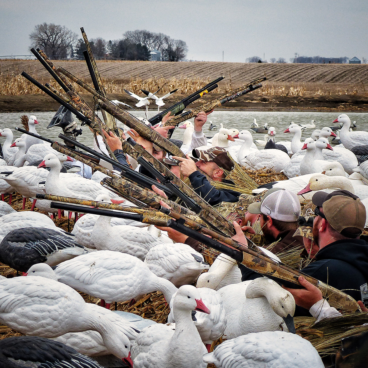 1-12-day-2-night-waterfowl-hunt-16106380231123623625
