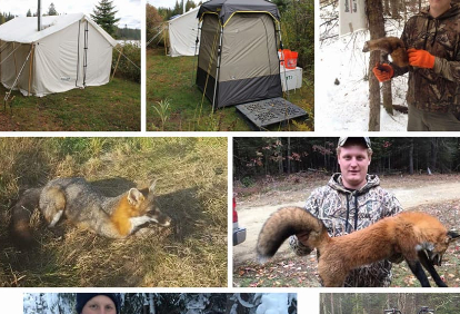 guided-bear-trapping-wlodging-food-14425652631558207428