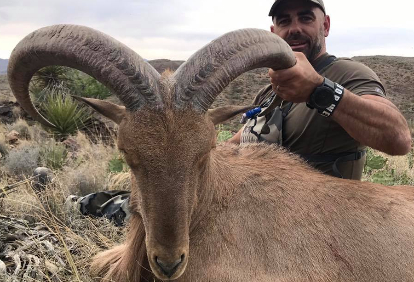 group-hunt-for-aoudad-8381274121557951699